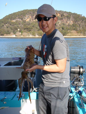 Squid from Pittwater
