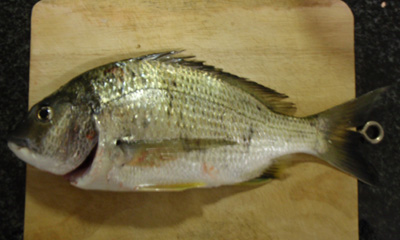 Bream in the Hacking